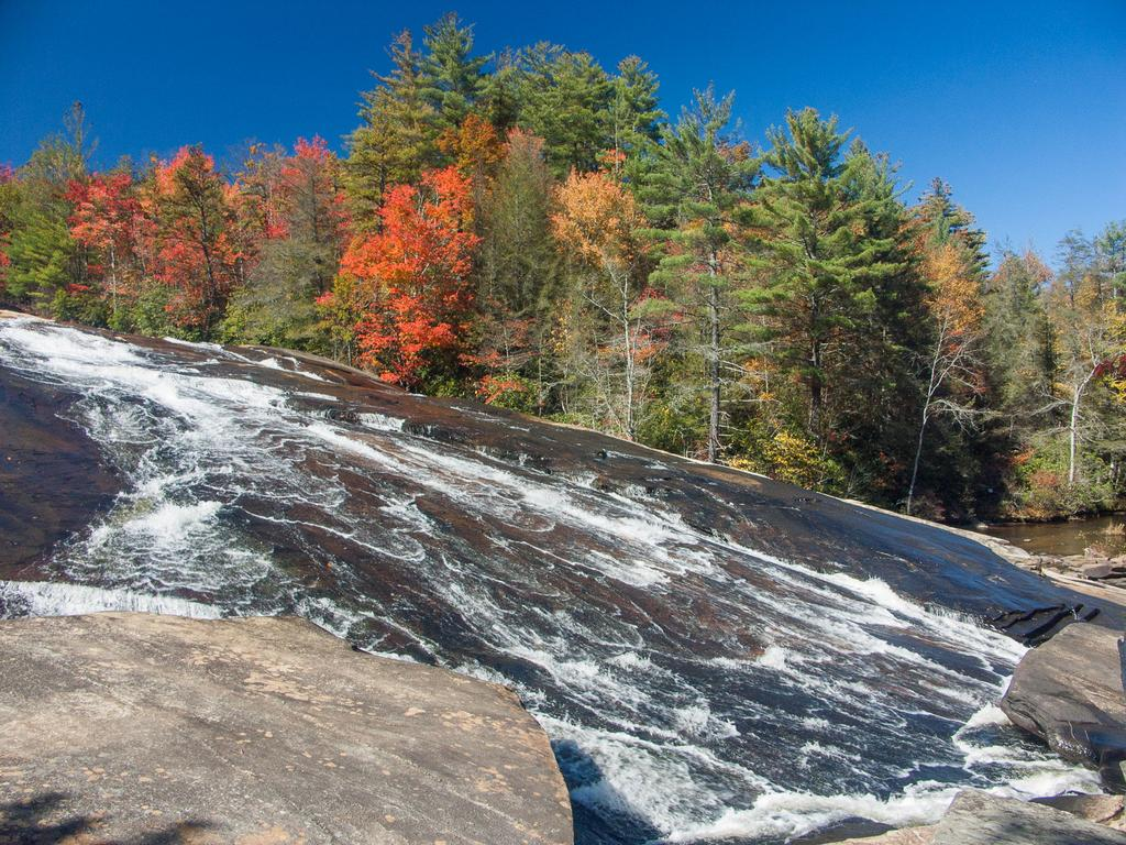 Photo Gallery Dupont State Forest Hiking