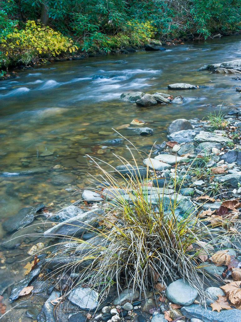 how to kill grass growing between river rocks