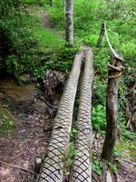 Log and Rope Bridge in Florence Preserve