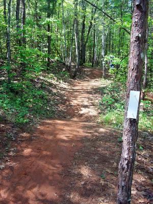 Rolling trail at Jackrabbit Mountain