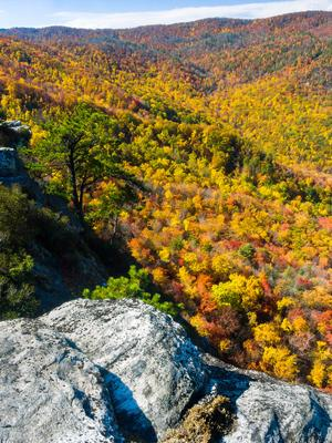 Fall color view from Big Lost Cove Cliffs