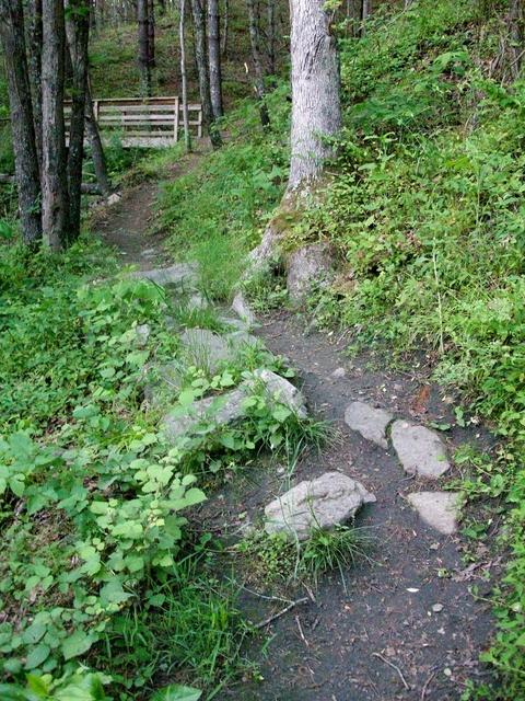 Technical Section of Trail at Alexander Park