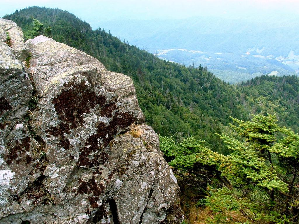 View from Roan High Bluff