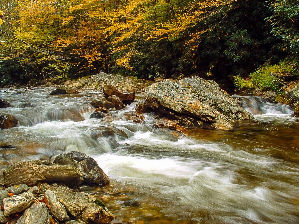 Rapids above Shining Creek on the Big East Fork in fall color.