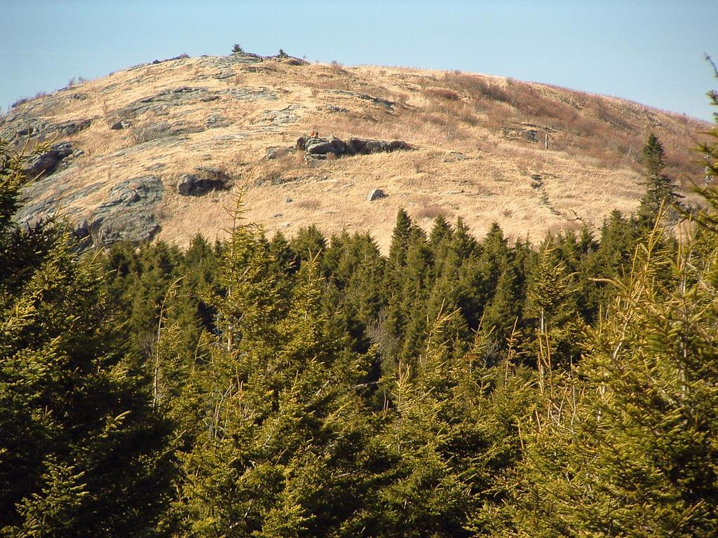 he trail to Black Balsam Knob travels across unique and interesting mountain balds above the spruce-fir forest.