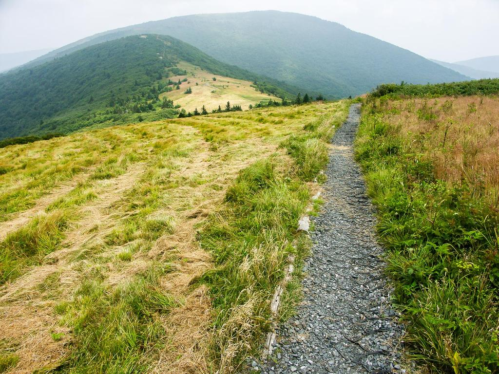 Appalachian Trail on Roan Mountain's Round Bald