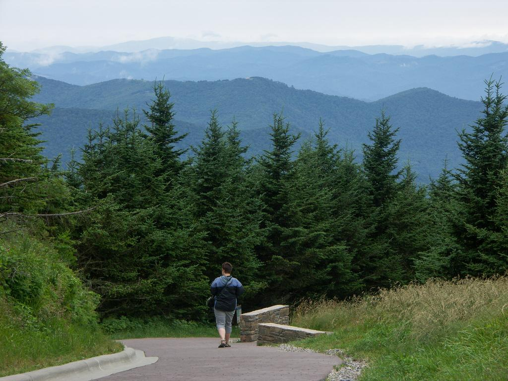Mount Mitchell Summit Path