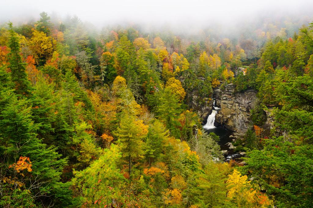 Linville Falls from Erwin's View in Autumn