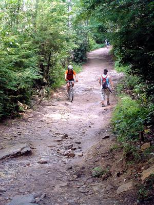 A more typical riverside, mixed use trail in DuPont State Forest