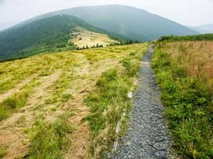 Appalachian Trail on Round Bald