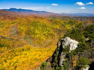 Fall view from Big Lost Cove Cliffs past Grandfather Mountain and the Wilson Creek Area.