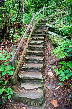 Stairs on the Crabtree Falls trail