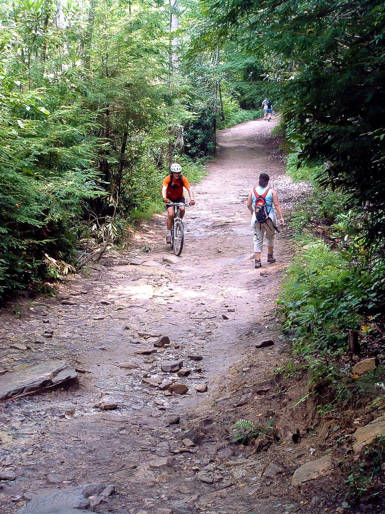 Mountain Biking At Dupont State Recreational Forest North