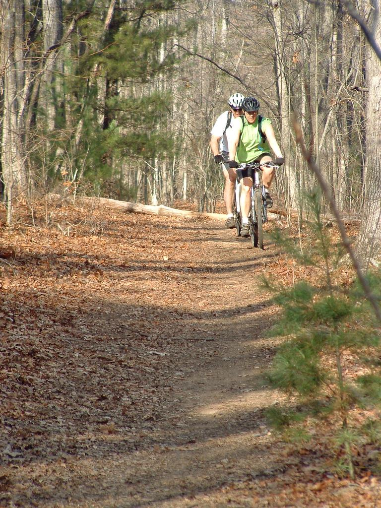 Mountain Biking At Bent Creek Experimental Forest Asheville North