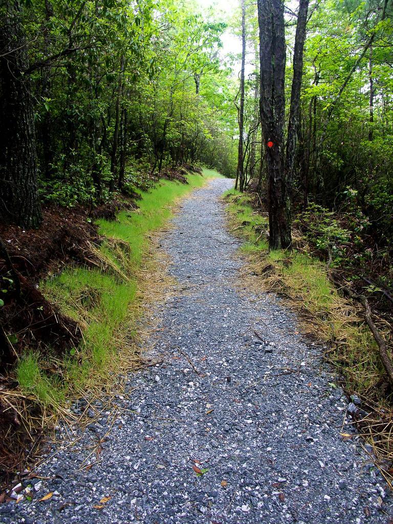 Gravel Start to the Rainbow Falls Trail