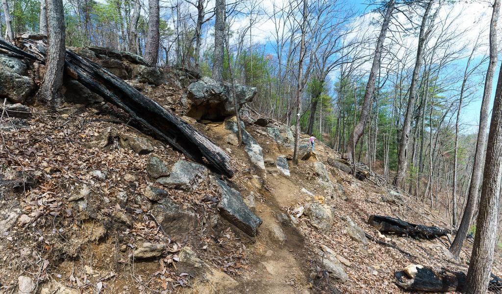 Rocky Ridge Above The Chestnut Knob Trail