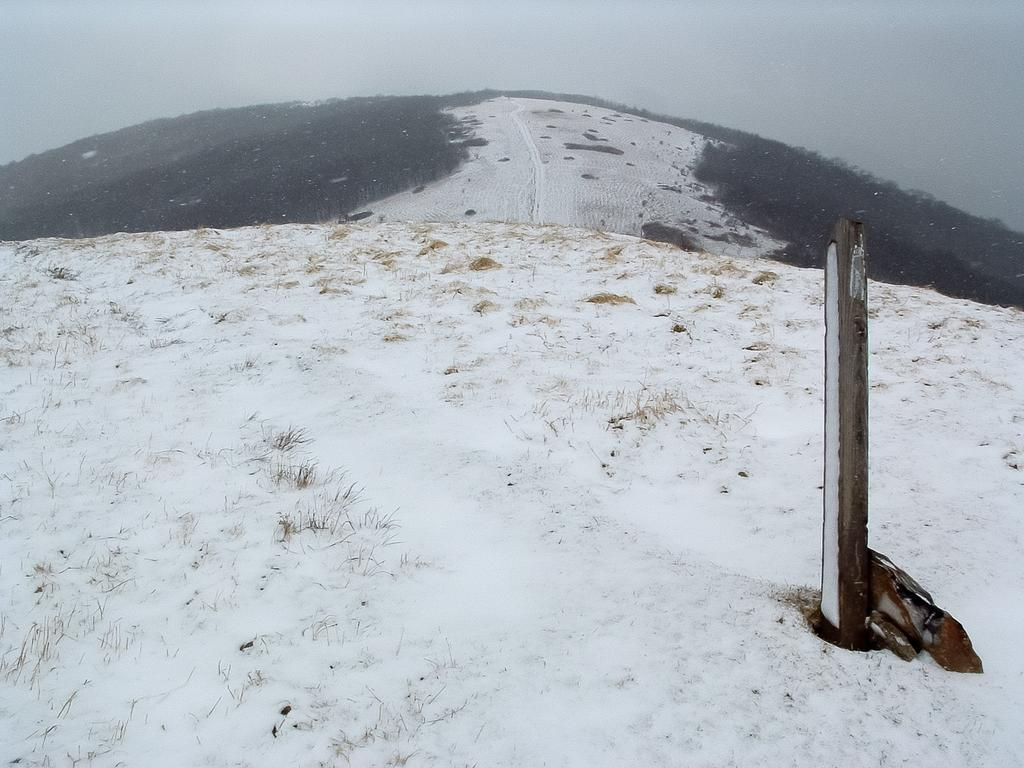 Current inspiration: Max Patch Mountain in snow.