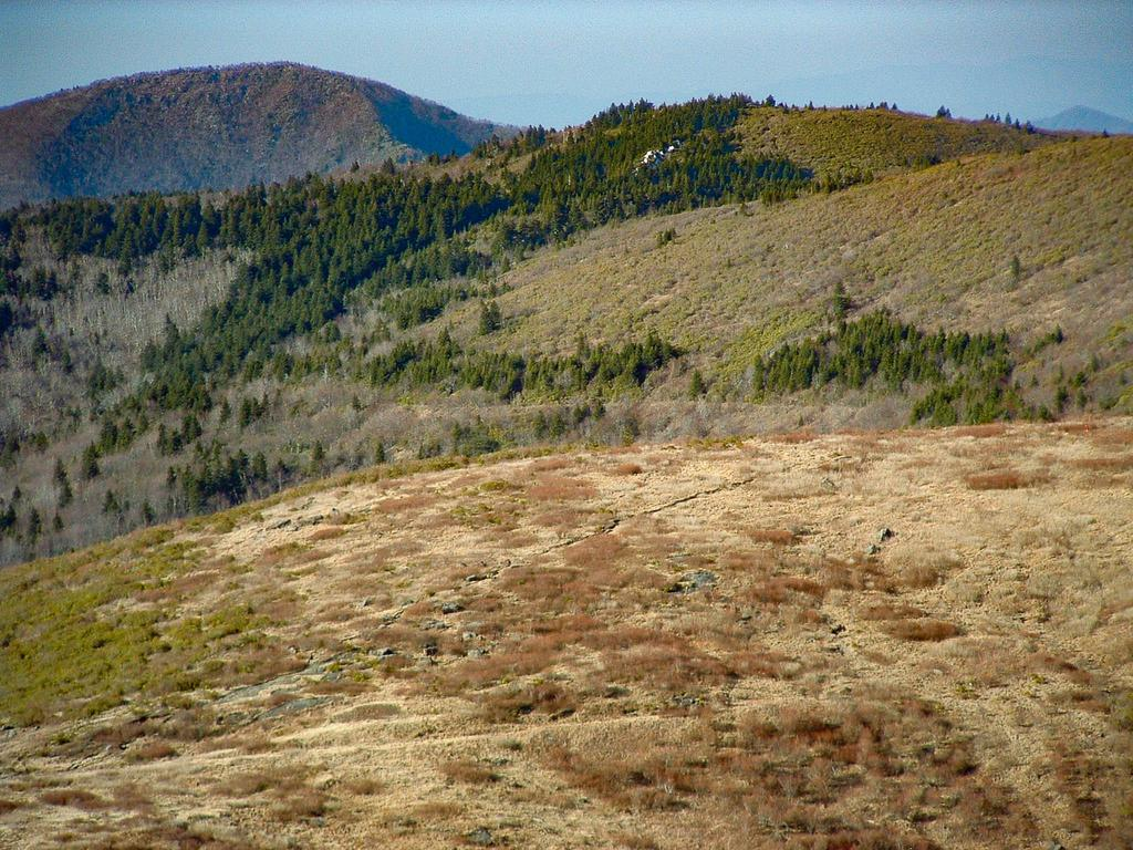 View across Tennent Mountain toward Shining Rock from Black Balsam Knob.