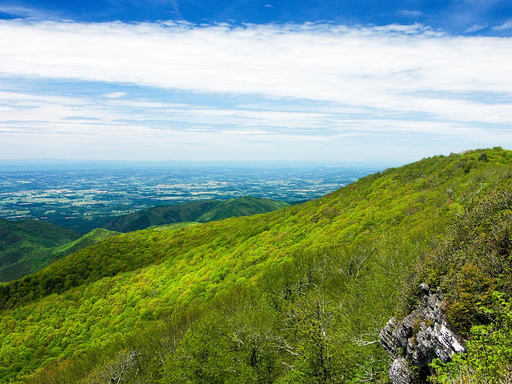 View from Blackstack Cliffs north toward Firescald Knob and the Great Valley region of eastern Tennessee.