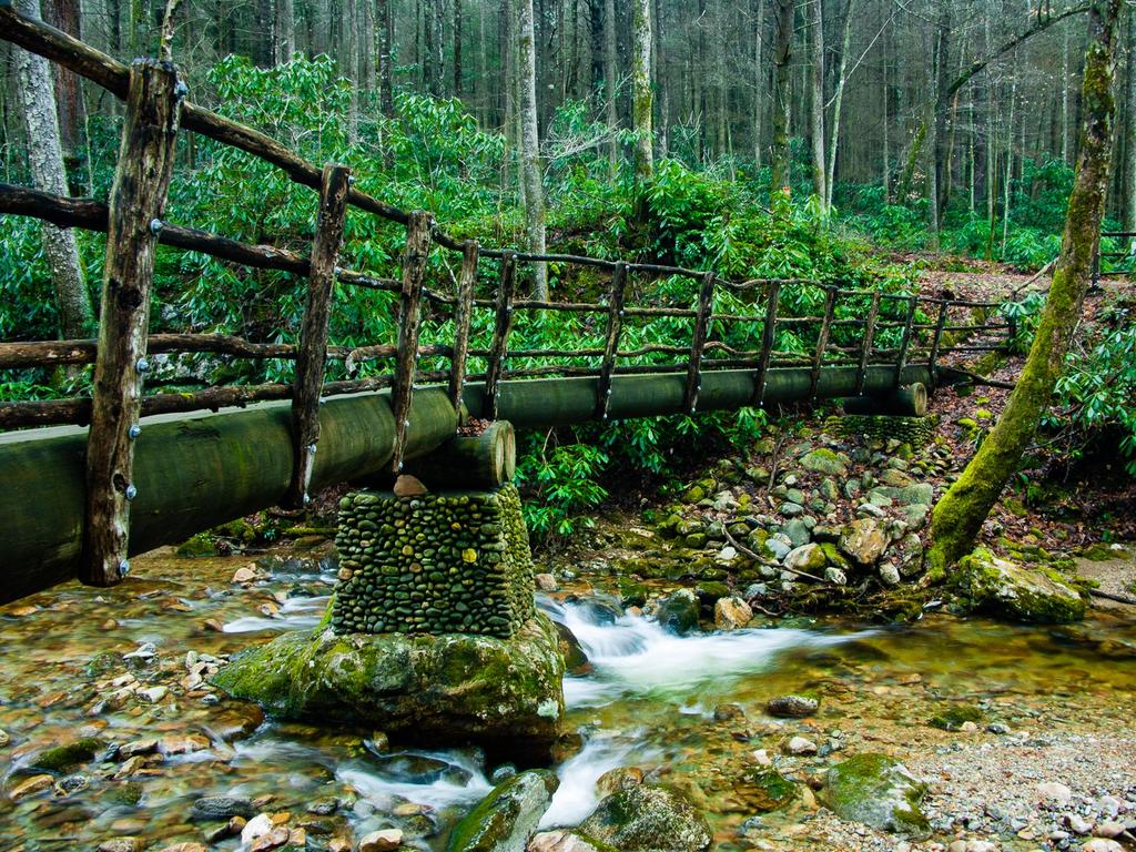 Log bridge over Hickey Fork Creek