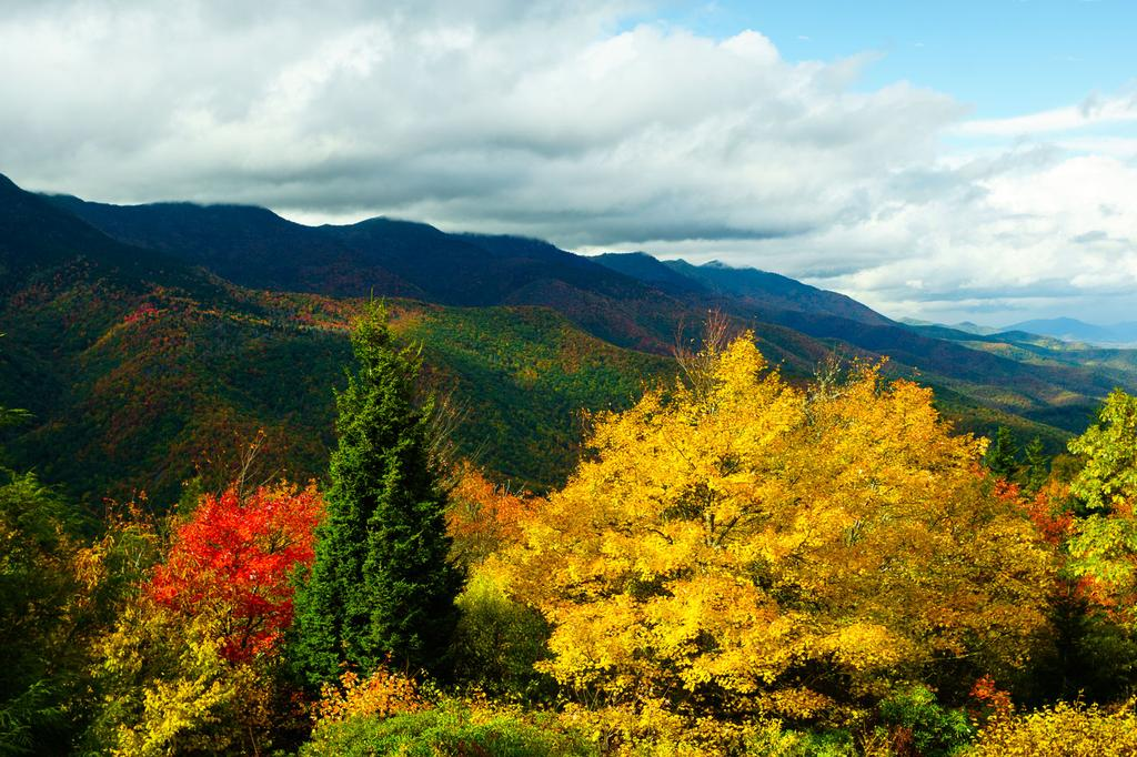 Black Mountains in Fall Color