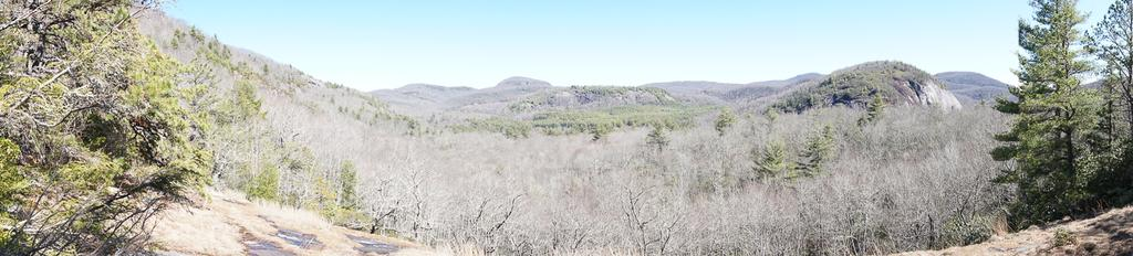 View of Panthertown Valley from Salt Rock Overlook