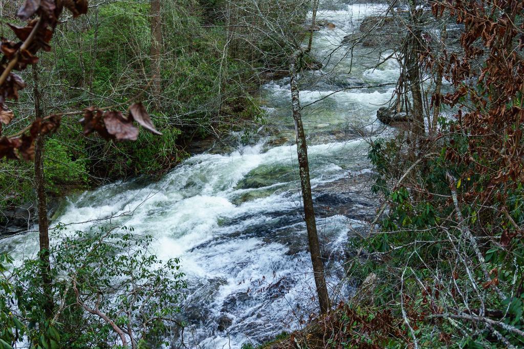 West Fork Tuckasegee River Above High Falls