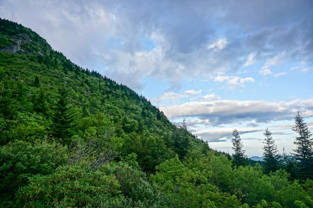 View of Potato Knob