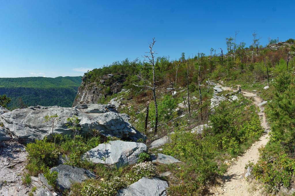 Mountains to Sea Trail along Shortoff's Cliffs