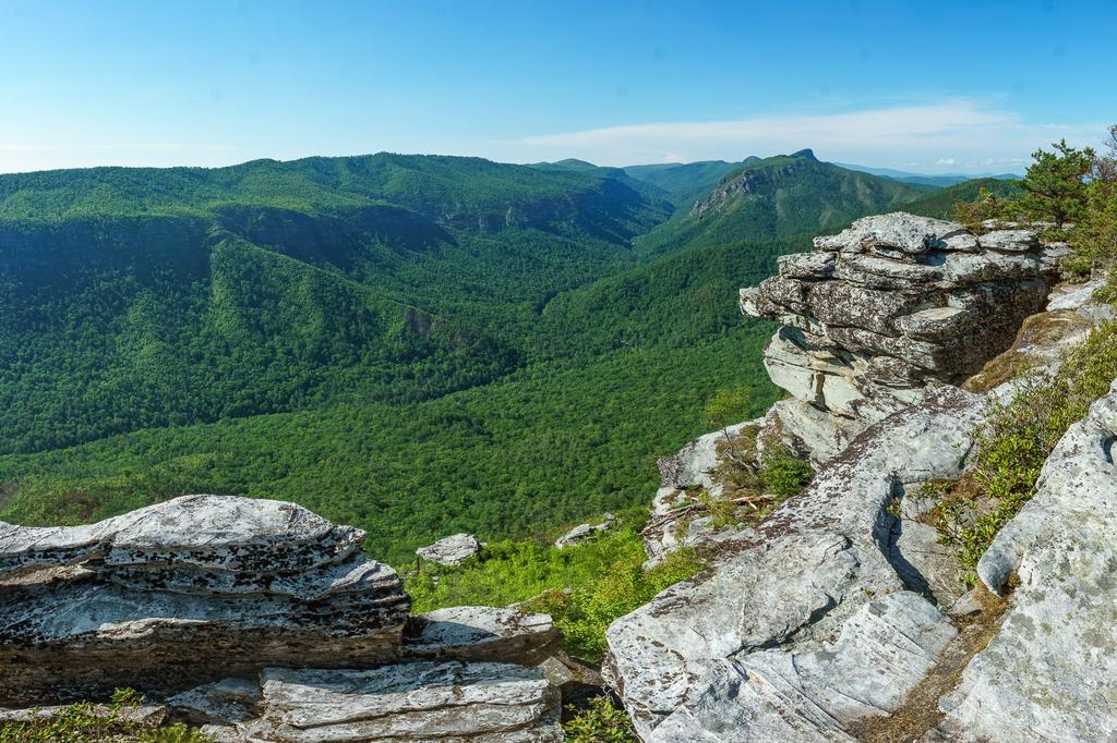 View of the Linville Gorge, looking north from Shortoff Mountain