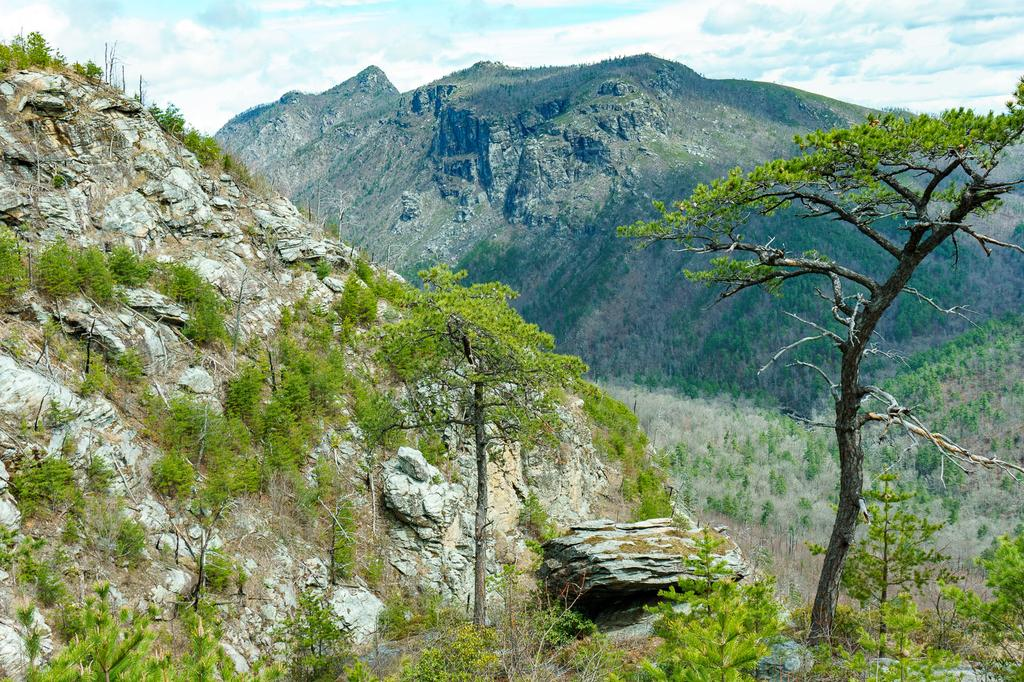 View Across Linville Gorge