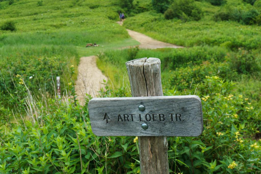 Wooden Sign for the Art Loeb Trail