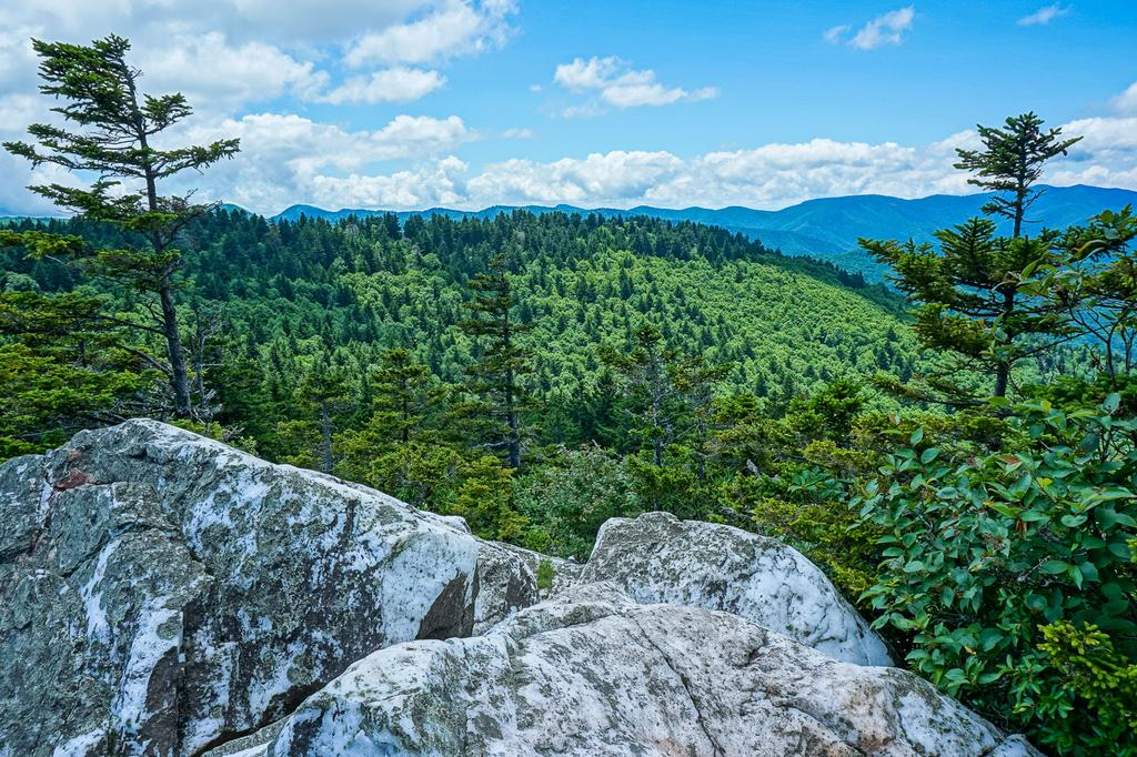 View of the Shining Rock Wilderness from Shining Rock