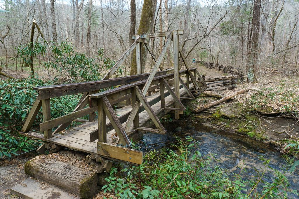 Unique Bridge on Cat Gap Loop