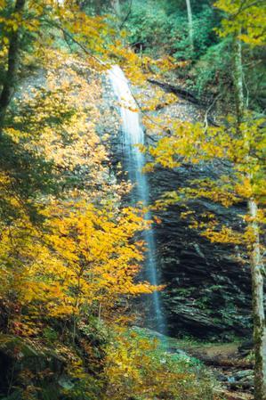 Fall Colors along FR 74