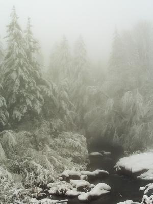 Snow along NC 215