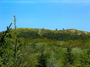 View of Black Balsam Mountain