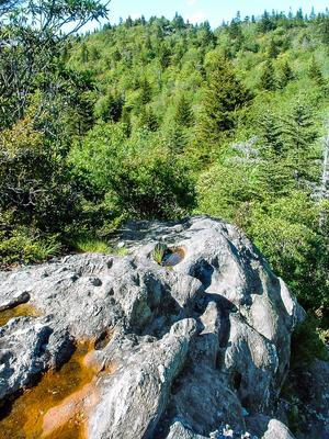 Little Sam Trail Rock Outcrop