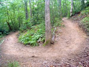 Galax Trail