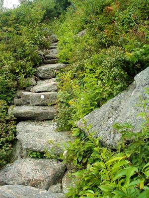 Rock steps on the trail