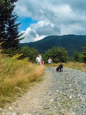 Hikers on the Commissary Trail below Mount Mitchell