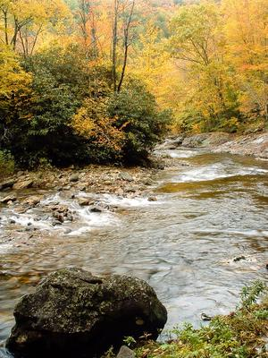 The Big East Fork
