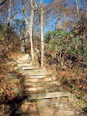Steps on the Return