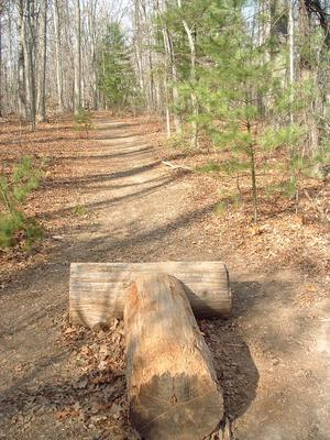 Technical Trail Feature on the Hardtimes Connector Trail
