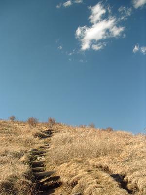 The Art Loeb Trail