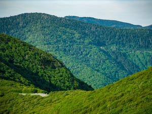 View of Mount Mitchell