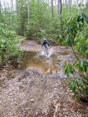 Crossing Fletcher Creek
