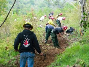 Building the New Trail