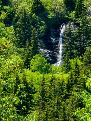 Mount Hardy Falls