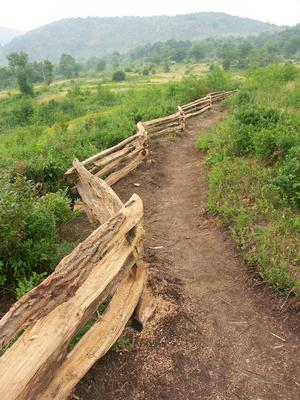 Split Rail along the New Trail